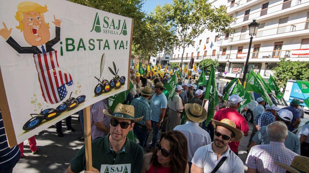 Foto: Piden la retirada de los aranceles impuestos por el gobierno estadounidense a la aceituna negra española