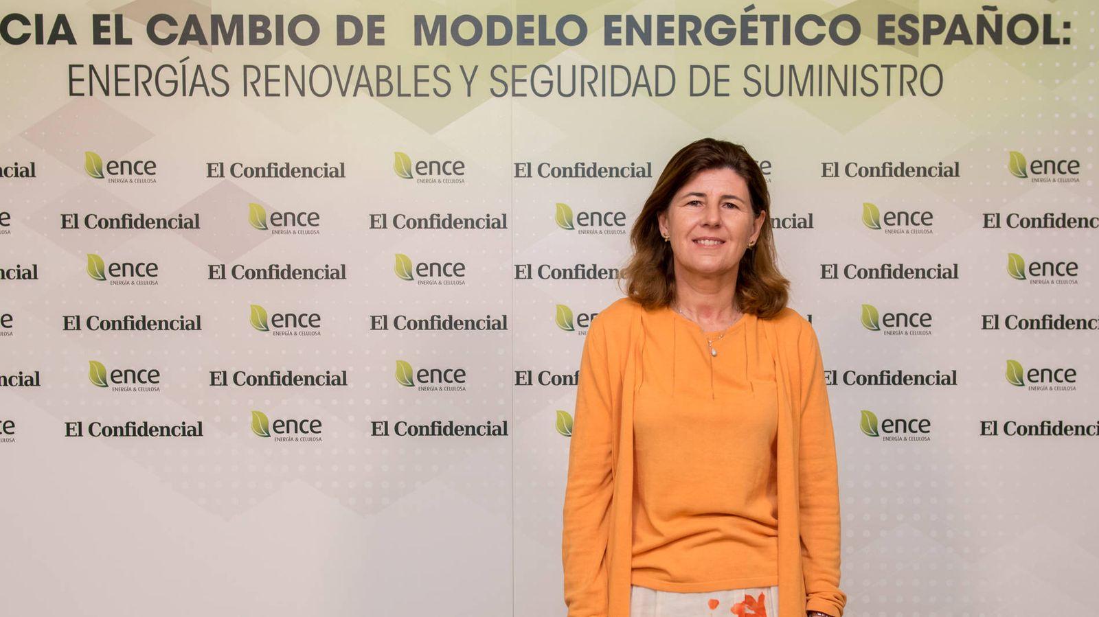 Energías renovables  Hacia el cambio de modelo energético español  energías  renovables y seguridad del suministro ef560ffebae02