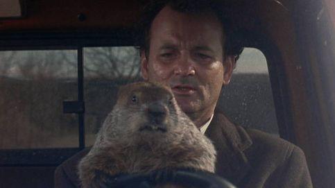 'Atrapado en el tiempo': 25 años pillados por el Día de la marmota