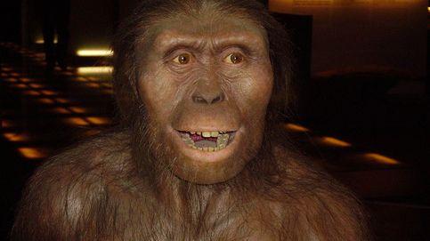 Lucy, la 'Australopithecus' que revolucionó la historia de la paleontología