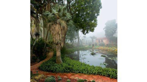 Los jardines más bellos del mundo: desde Australia y Japón hasta Sudáfrica