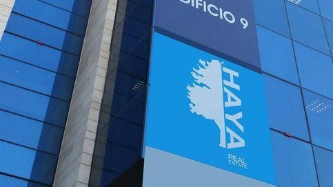 La inmobiliaria de Cerberus en España (Haya Real Estate) prepara un ERE