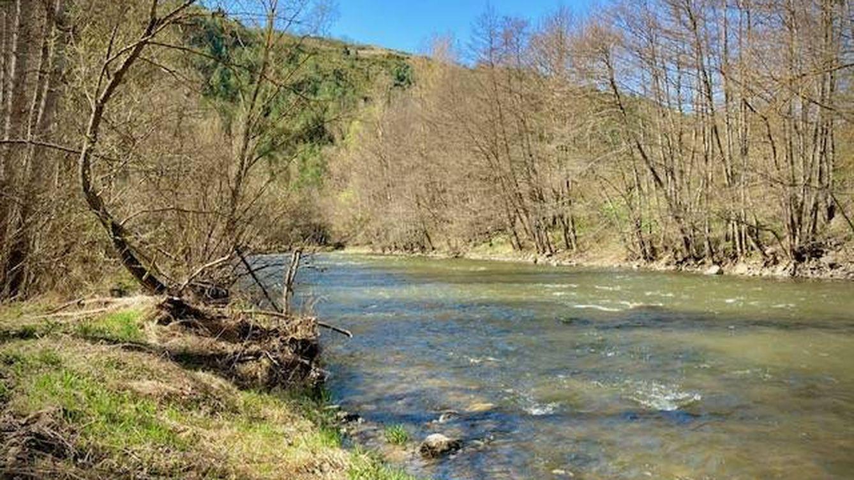 Vídeo: la banda sonora del río aguas abajo