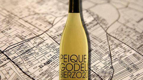 La godello del Bierzo, vinos blancos que florecen en tierra de tintos
