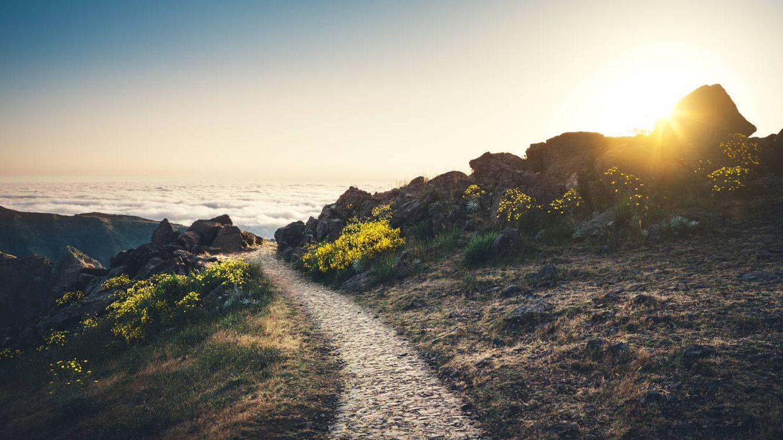 La Vía Francígena: el otro Camino de Santiago