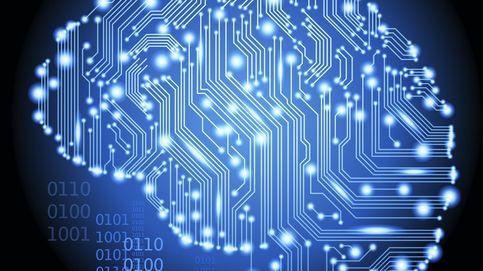 ¿Más inteligente? Tu organización de la red cerebral será más estable