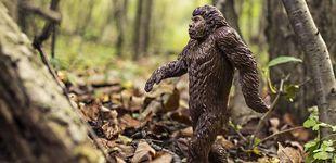 Post de Un cazador de Bigfoot la lía en un Parque Nacional en Estados Unidos