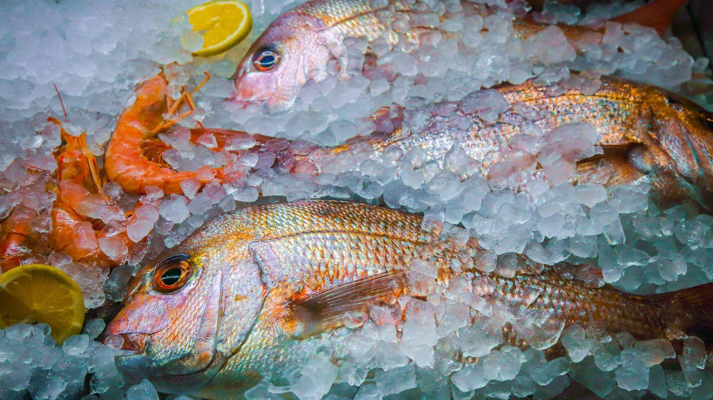 Los pescados que costarán el doble y es mejor comprar y congelar ahora