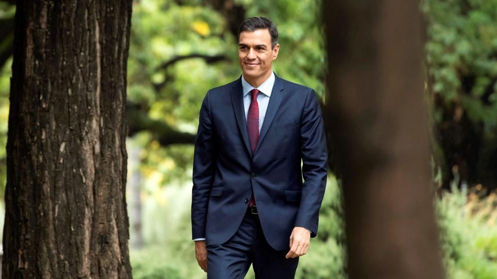 Foto: Pedro Sánchez en una imagen de esta semana. (EFE)