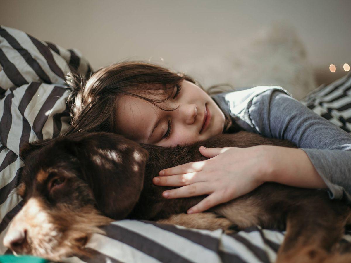 Foto: Dormir con tu mascota es bueno para el sueño... y para la salud (Foto: iStock)