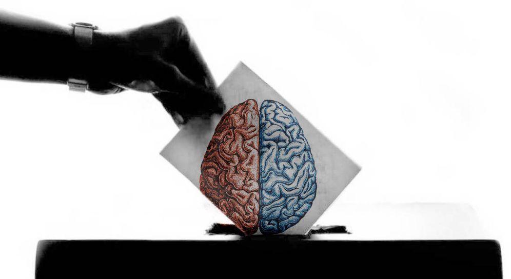 Foto: Muchos estudios han tratado de acceder al cerebro de un votante. (EV)