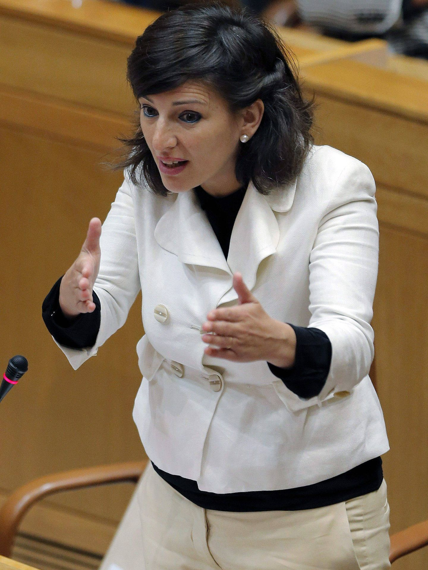 Yolanda Díaz, en la Xunta en 2013. (EFE)