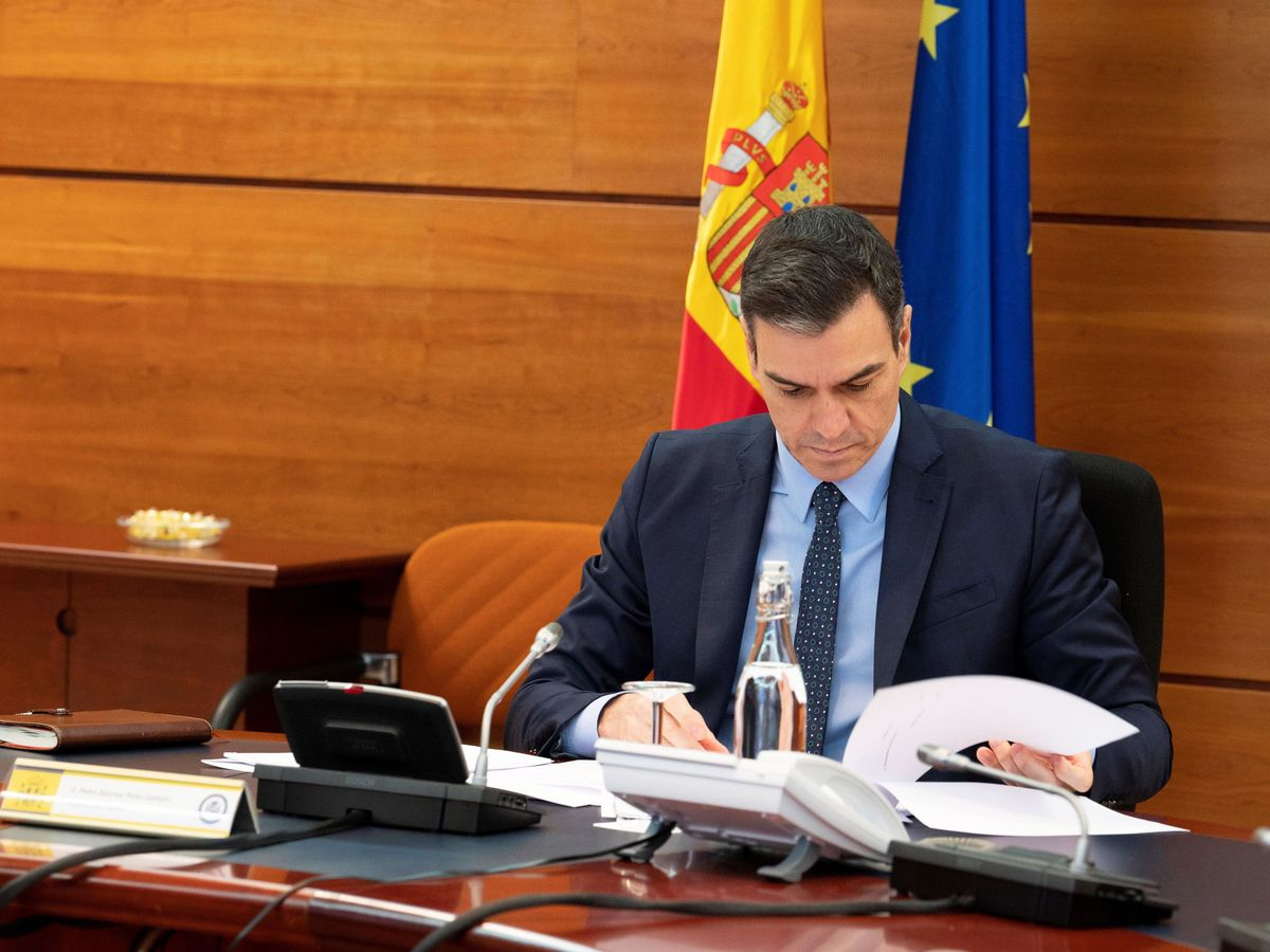 Foto: Pedro Sánchez, este 31 de marzo, durante el Consejo de Ministros telemático. (EFE