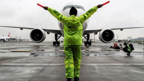 Las avispas que están poniendo en peligro los aviones australianos