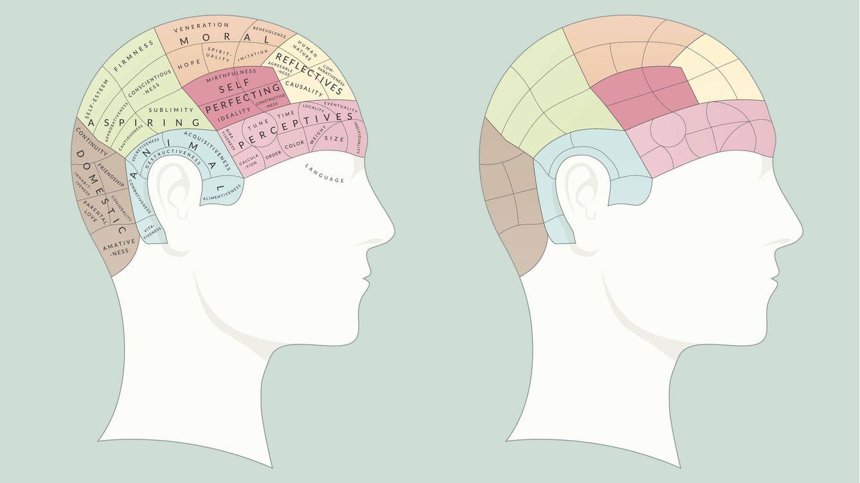 El origen de la frenología: la pseudociencia más absurda que ha existido