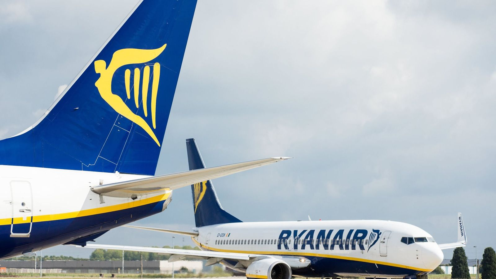 Foto: Aviones de Ryanair. (EFE)