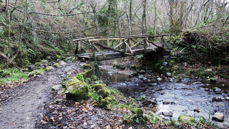La ruta de la Xana a su paso por el bosque tras el desfiladero montañoso. Sin duda, un regalo para la vista. (iStock)