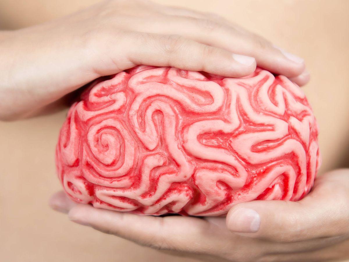 Foto: Nuestro segundo cerebro. (iStock)