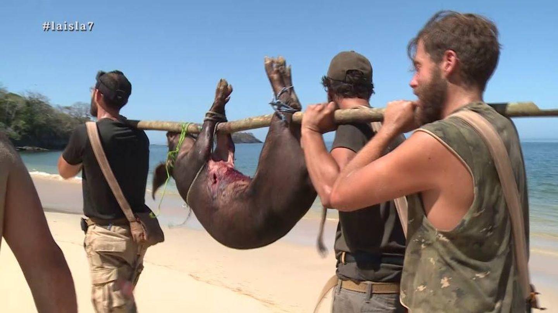 Santi logra capturar un cerdo en 'La isla'. (Atresmedia Televisión)