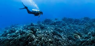 Post de Los submarinistas cuentan qué es lo peor que han visto cuando estaban buceando