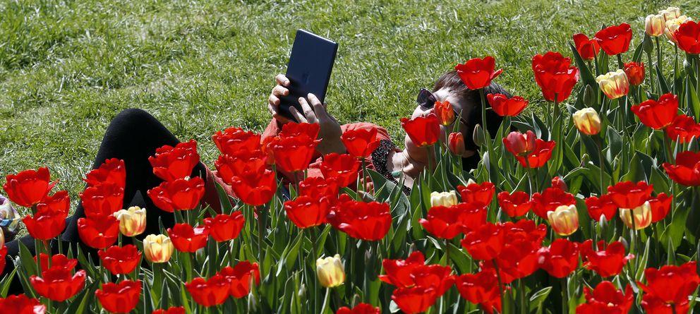 Foto: Estamos saturados de tabletas