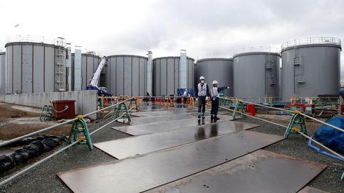 El agua contaminada de Fukushima podría afectar al ADN humano