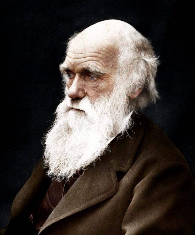 Foto: Charles Darwin sigue siendo reconocido a día de hoy como uno de los científicos más influyentes. (Cordon Press)