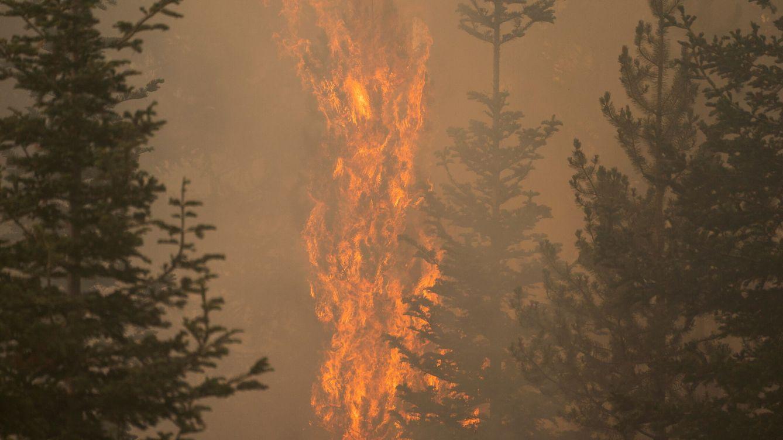 El mayor incendio de EEUU genera su propio clima y no será contenido hasta octubre