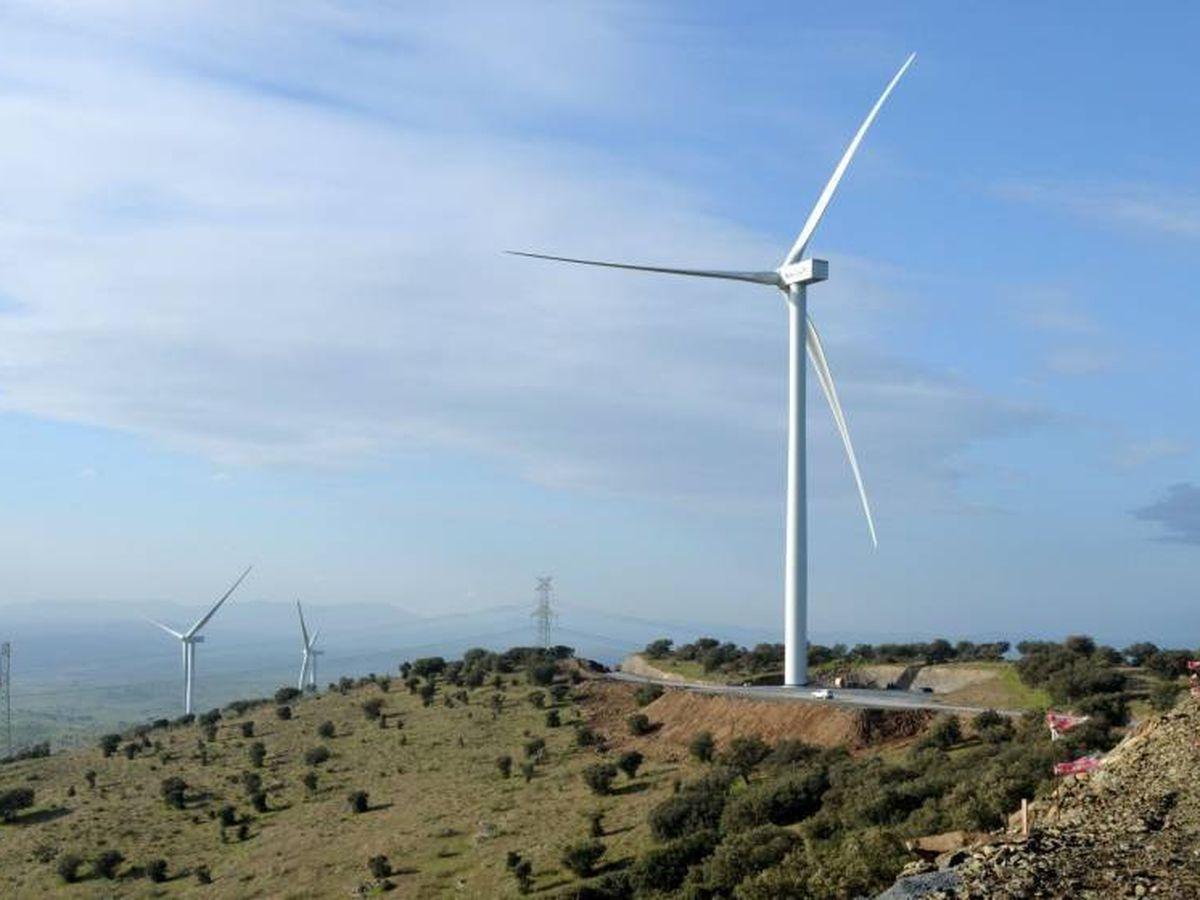Foto: Vista de un parque eólico de Aldesa. (EFE)