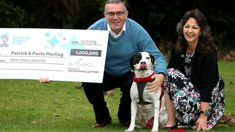 Un hombre gana un millón a la lotería gracias a que su perro es todo un gourmet