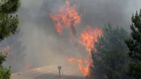 El incendio de Pedrógão Grande (Portugal), en imágenes