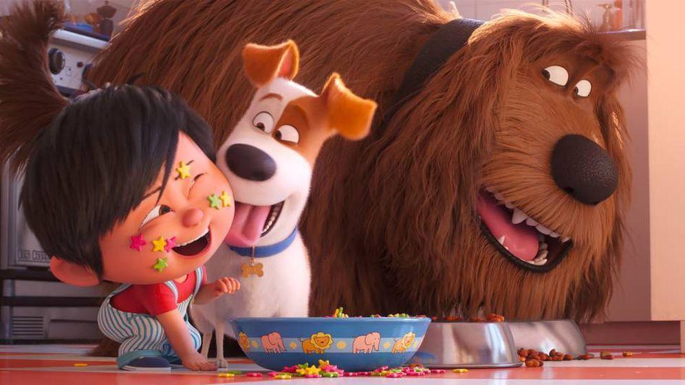 Foto: Fotograma de 'Mascotas 2'. (Universal)
