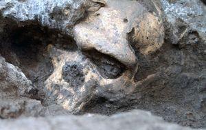 Un cráneo para unirnos a todos