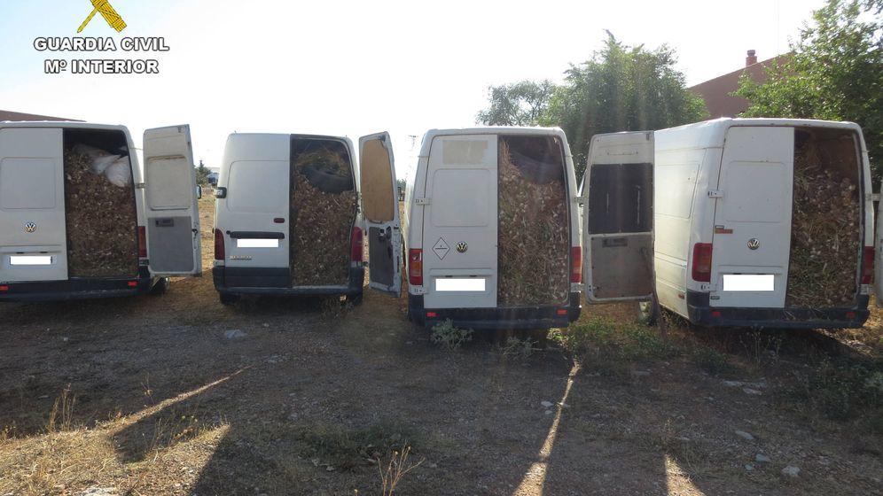 Foto: 13.000 kilos de ajos robados: El negocio de las mafias rumanas en España se sofistica