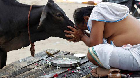 Los estrictos vegetarianos que han construido un imperio del consumo de carne