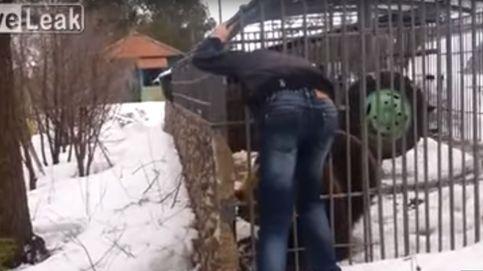 Un borracho intenta acariciar a un oso en una jaula y pierde la mano