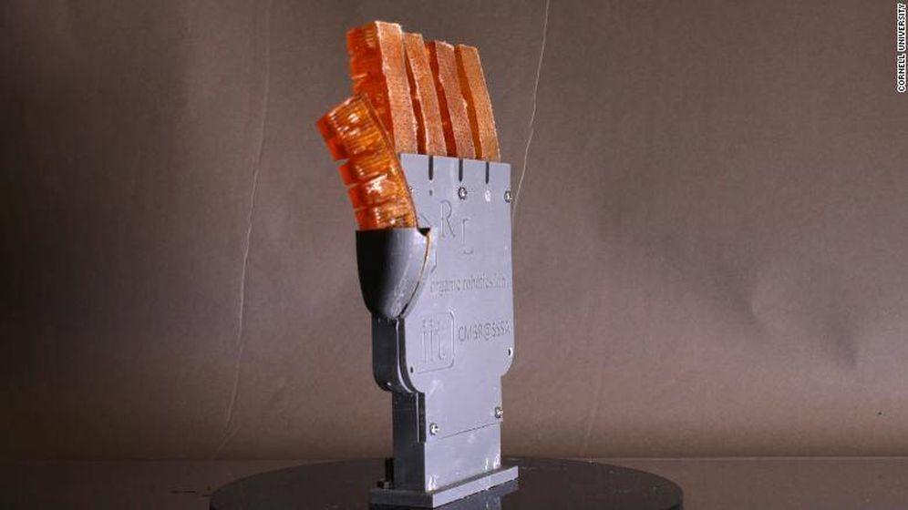 Foto: Mano robótica capaz de lanzar agua para bajar su temperatura. Foto Universidad de Cornell