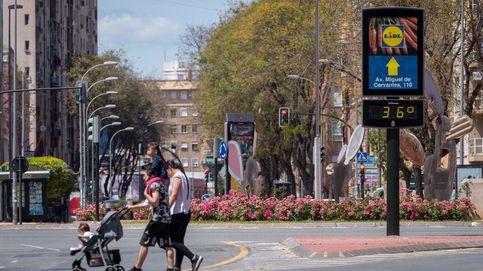 Vida cotidiana en Tokio y el tiempo en Murcia: el día en fotos