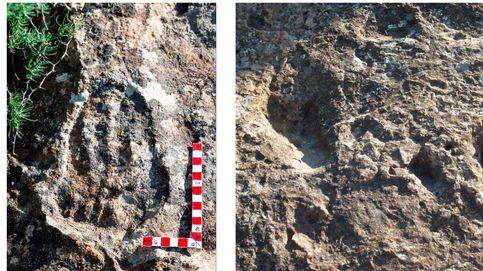 Hallan un posible australopiteco en Málaga