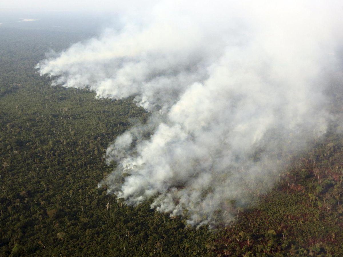 Foto: Incendio en el amazonas, en el área de Mato Grosso, en Brasil. Foto: Reuters