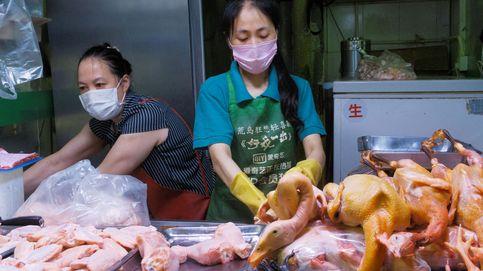 Sopa de murciélago, asado de perro. ¿Realmente se come de todo en China?