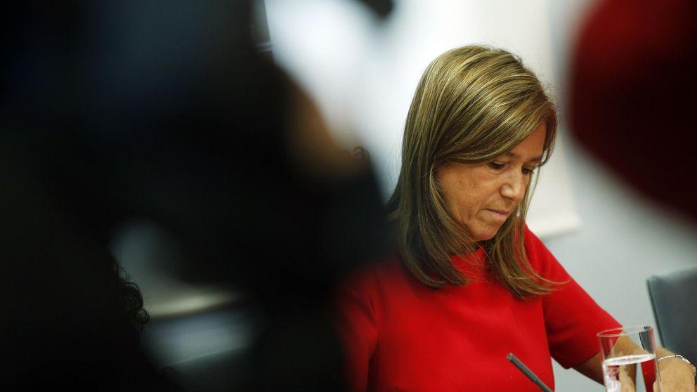 El PP compara su lealtad al gobierno con la postura del PSOE en la crisis del ébola