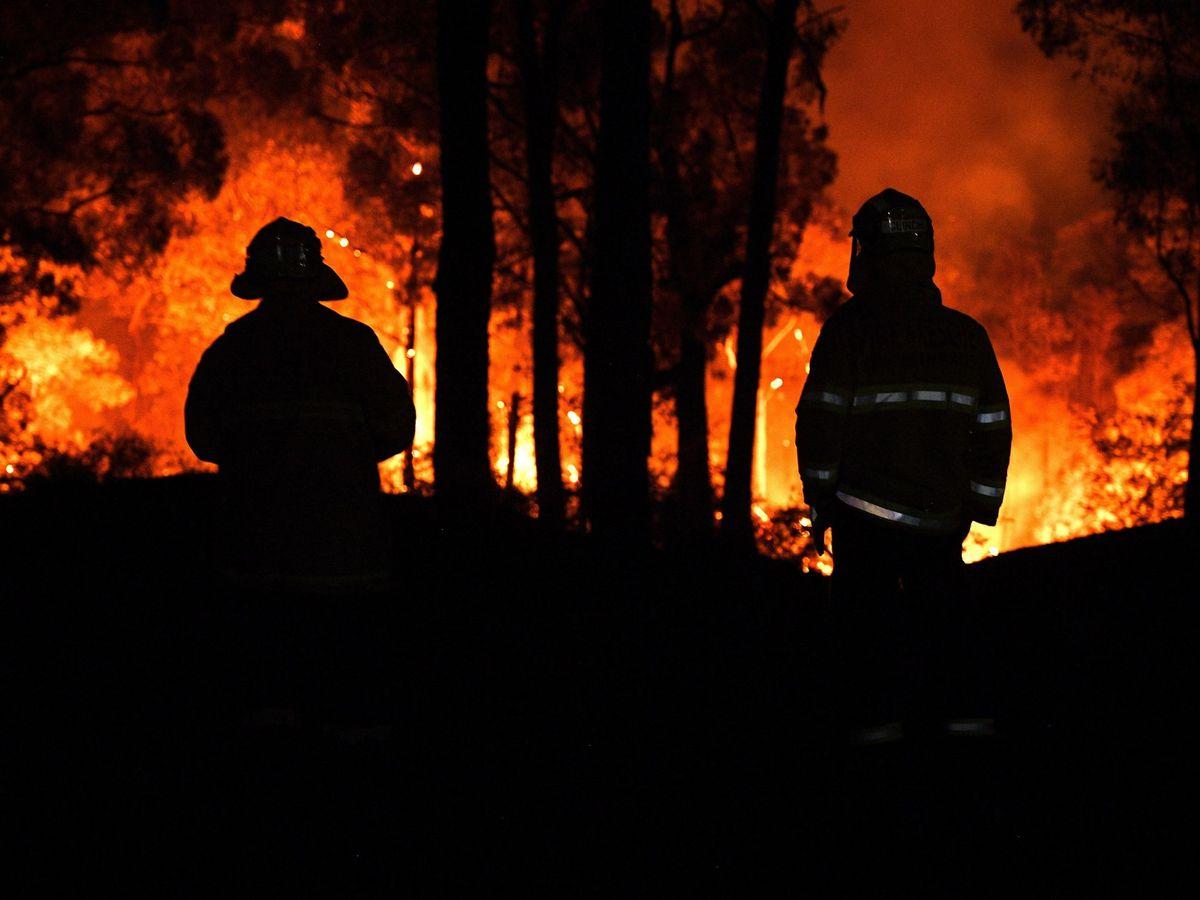 Foto: Miembros del cuerpo de bomberos del estado de Nueva Gales del Sur, a mitad de noviembre. (EFE)