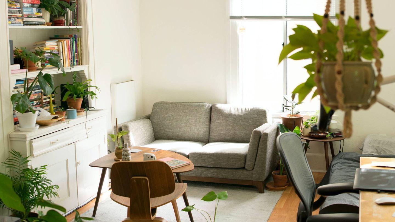 Cinco trucos para decorar tu salón. (Patrick Perkins para Unsplash)