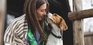 Post de Así es la brucelosis, la enfermedad que tu perro puede contagiarte