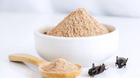 Los insospechados ingredientes de la comida: insectos y pelos de rata