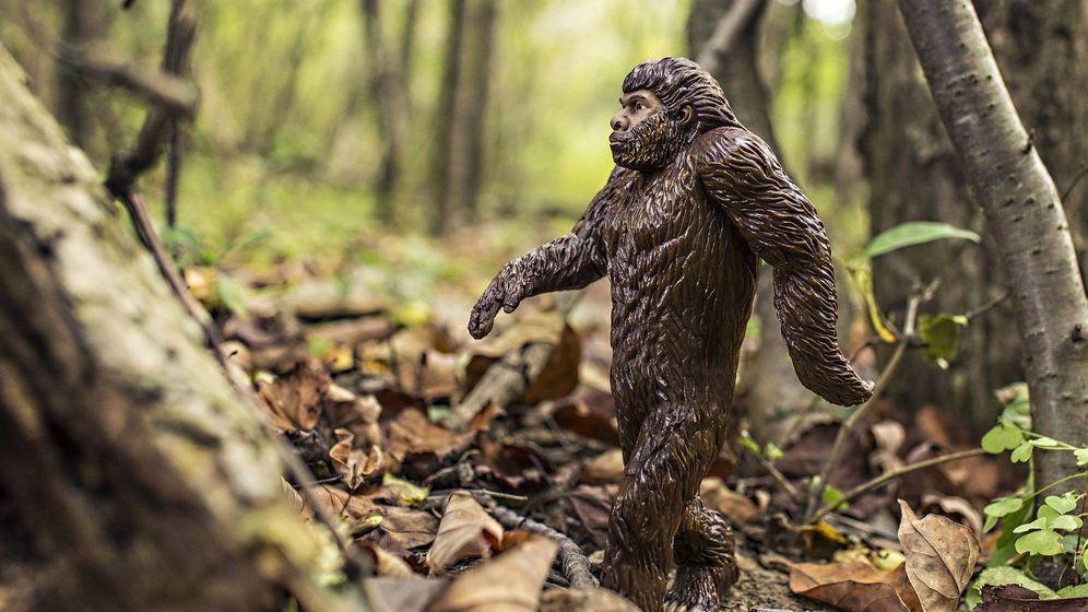 Foto: Un muñeco de 'Bigfoot' en un bosque. (Pixabay)