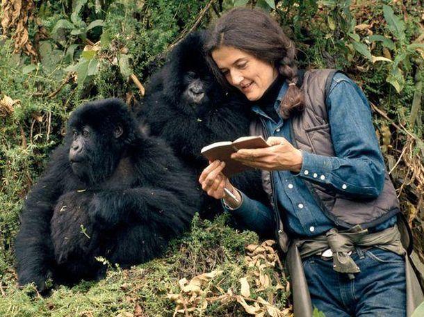 Foto: Dian Fossey fue asesinada en Ruanda en 1985