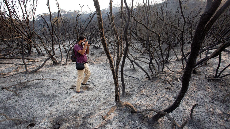 El paisaje de Sierra Bermeja tras el paso de las llamas es desolador. (Reuters)