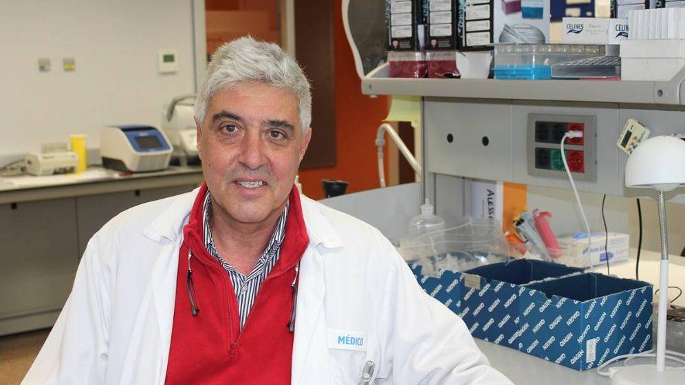 Foto: Guillermo Sanz, jefe de hematología del Hospital La Fe de Valencia. (IISLAFE)
